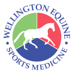 Wellington Equine